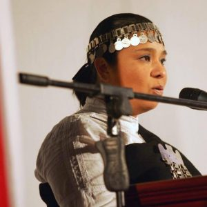 Karin periodista mapuche